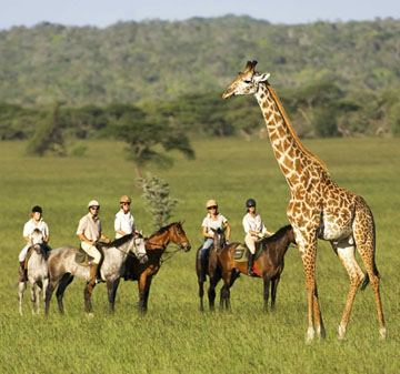 Cheap flights to Africa From London - Travel Wide Flights