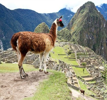 Cheap flights to South America From London - Travel Wide Flights