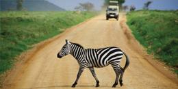 Africa - Cheap Flights to Tanzania